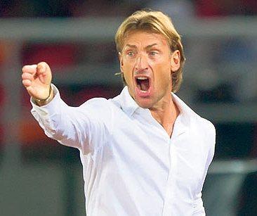 Zambia FA dismiss Renard quit reports