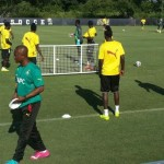 2014 World Cup Friendly: Kwesi Appiah hopes to avoid injuries in South Korea warm-up