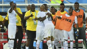 Ghana's new sports minister has set up a three-man committee to investigate Ghana's poor showing at the 2014 World Cup in Brazil.
