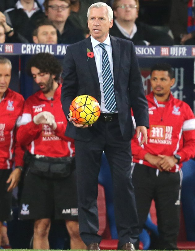 Crystal Palace midfielder Ledley: Pardew sacking right call