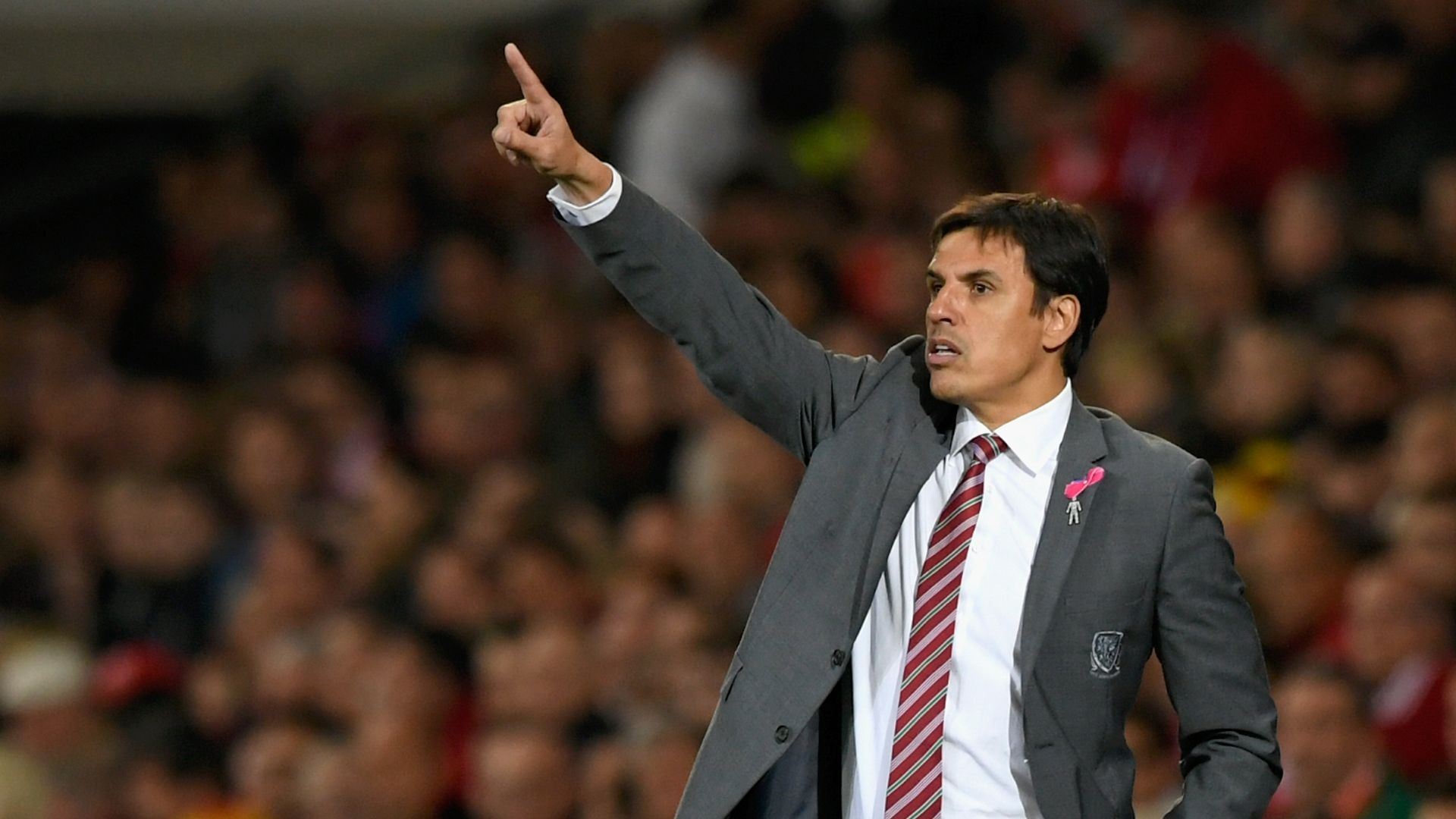 Sunderland must give Coleman time - Grayson