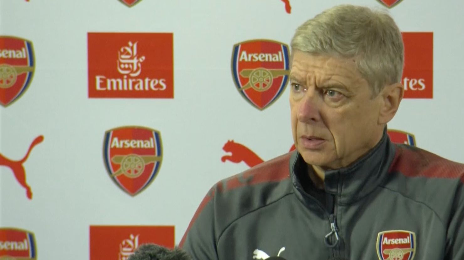Wenger: Football can learn from sumo wrestling