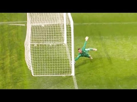 Unbelievable Goalkeeper Saves 2018/19 ● HD