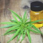 Exciting benefits of CBD oil for Vegan Athletes