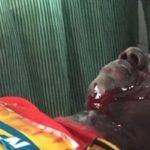 Video: Kotoko fan in critical condition after police shooting in Berekum Chelsea defeat