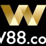 Detailed introduction of w88