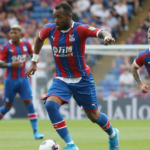 Crystal Palace manager waxes lyrical on 'frustrated' Ayew after victory against Newcastle United