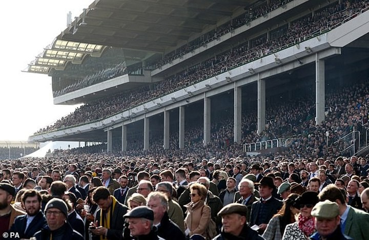Cheltenham organisers defend decision to host last month's races in UK