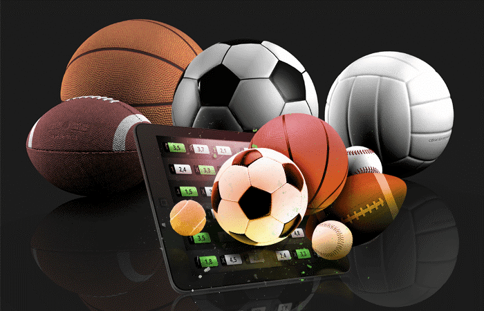 How to succeed in sport betting business?